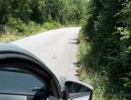 Rijeka Crnojevića - jadąc wąską drogą można wjechać na żmiję ...
